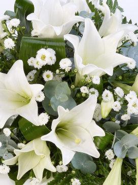 whitelilyspray1.jpg