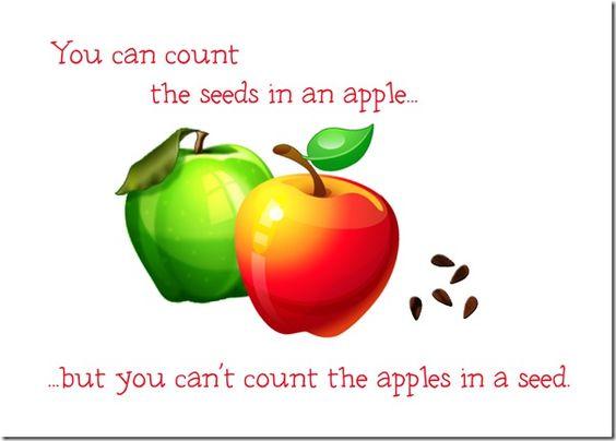apple seeds.jpg