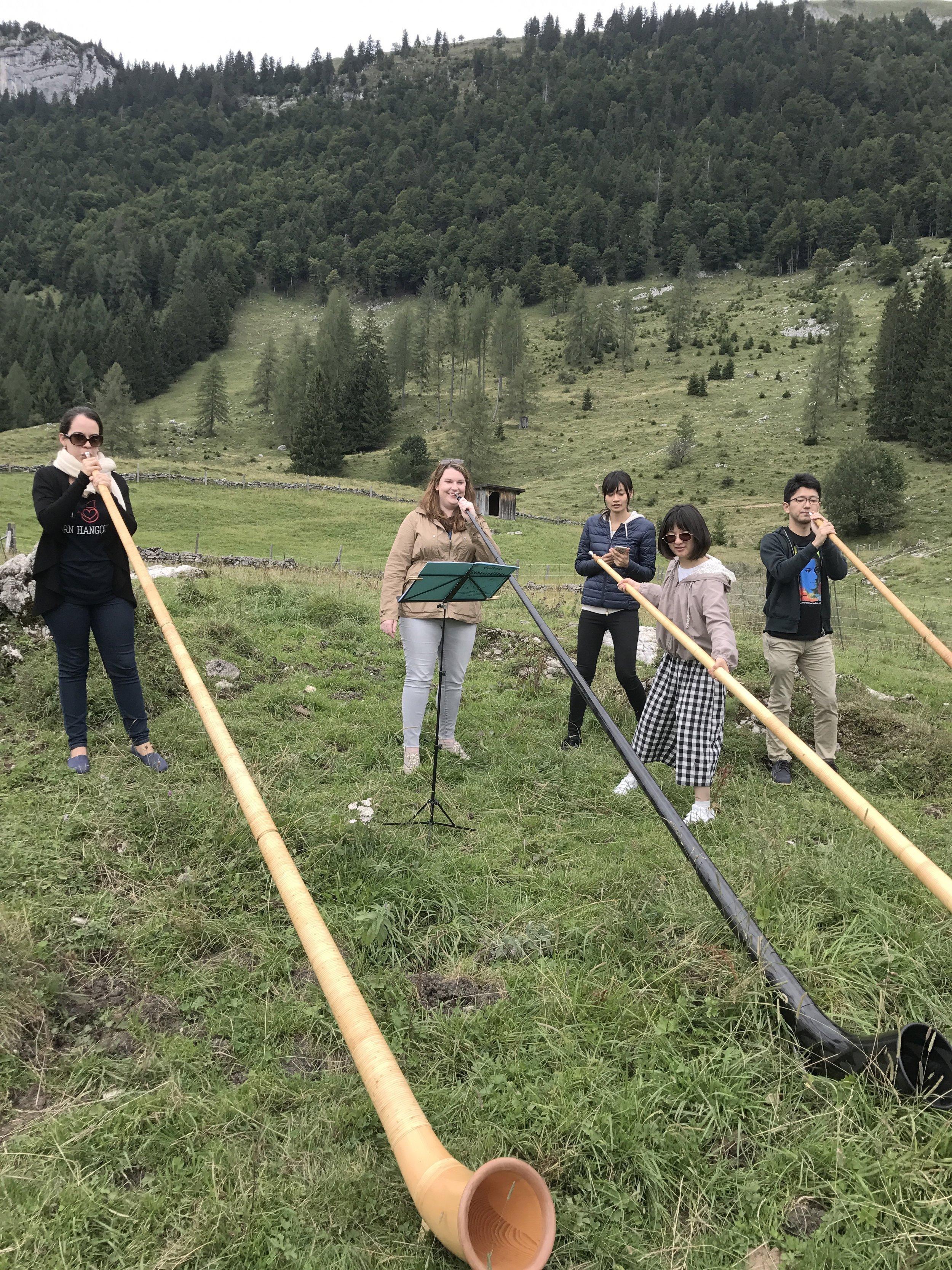 Alphorns at See-Wald-See