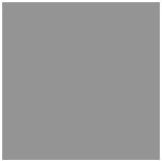 DazzleRocks_logo_gray.png