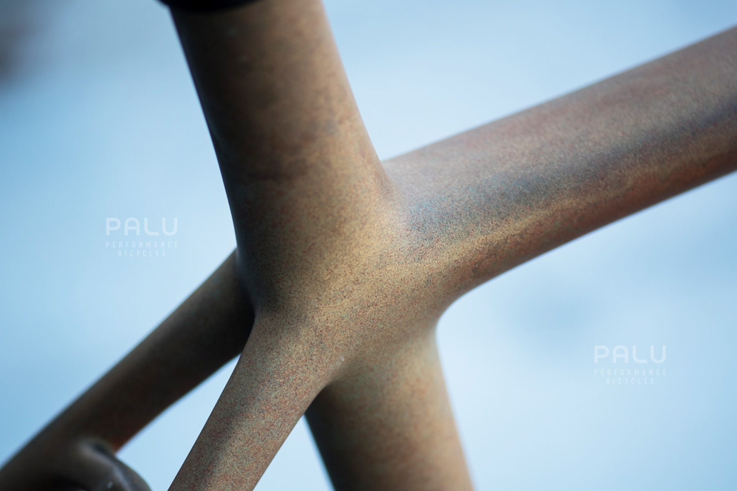 Palu-Italian-Carbon-Fibre-Gravel-E-Bike-Palubicycles-London_0009_Layer 23.jpg