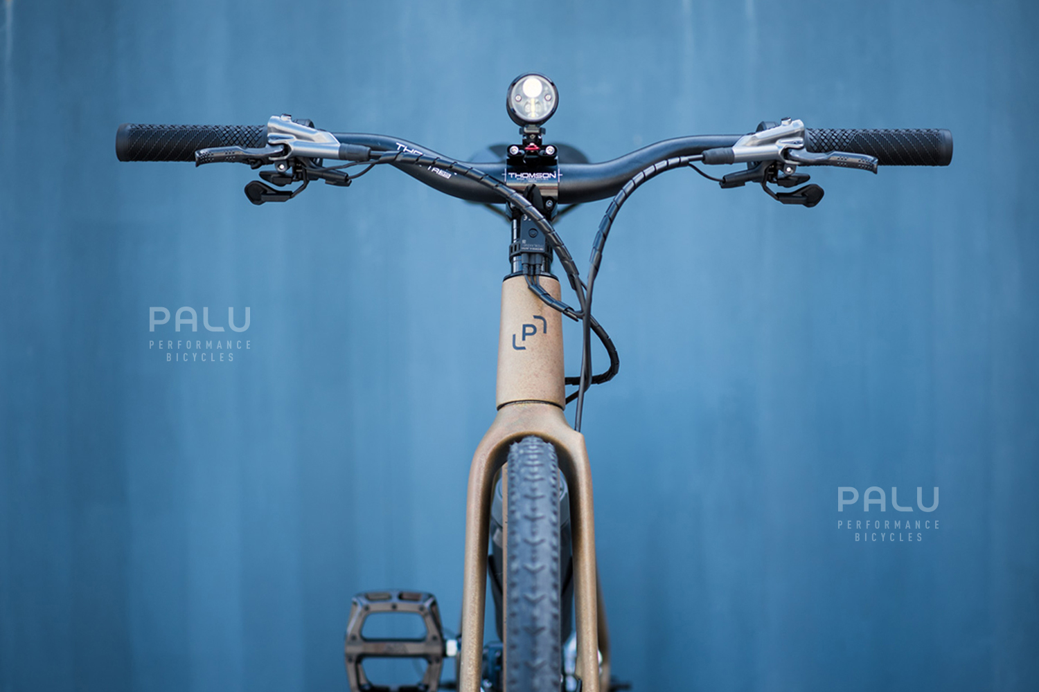 Palu-Italian-Carbon-Fibre-Gravel-E-Bike-Palubicycles-London_0019_Layer 11.jpg