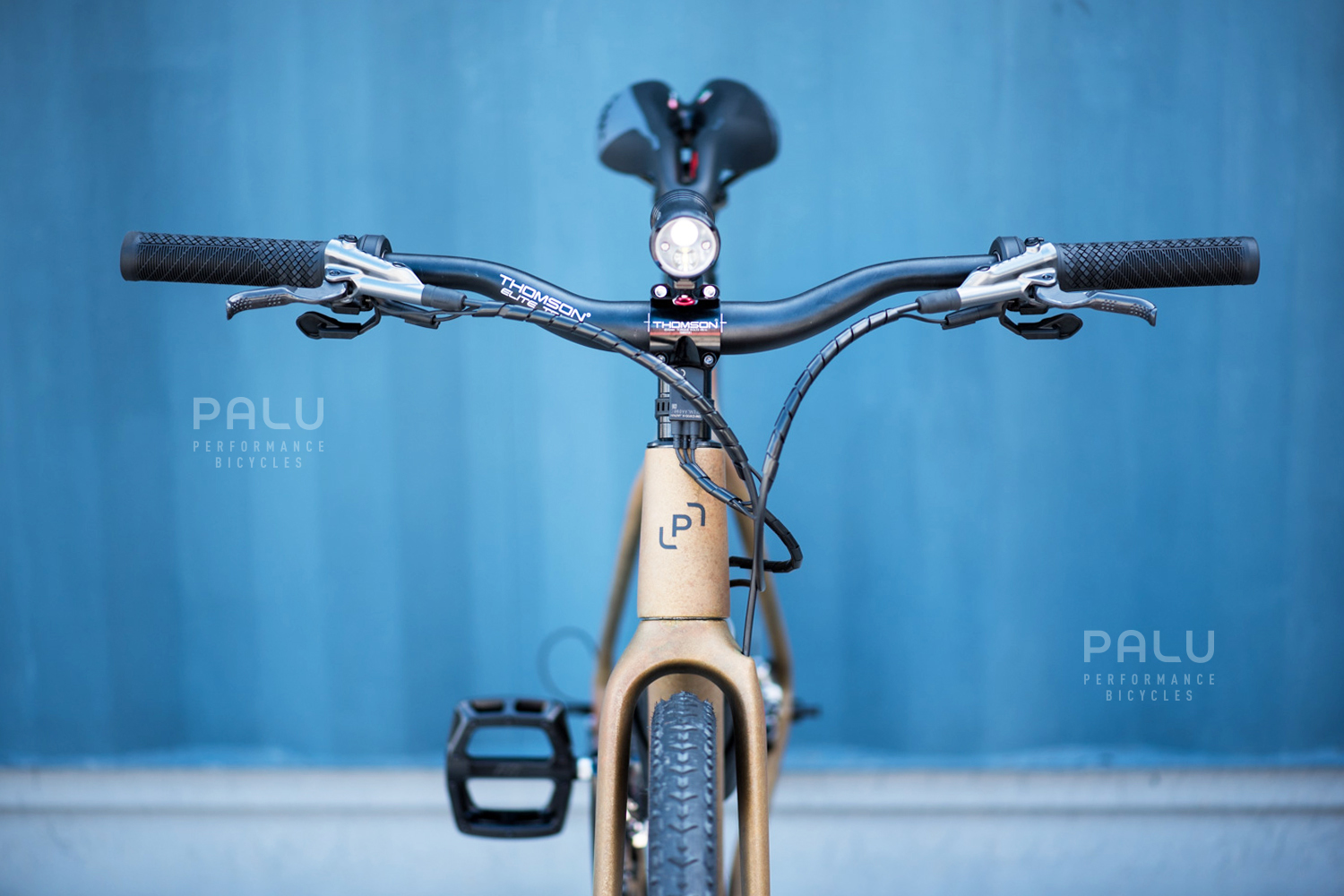 Palu-Italian-Carbon-Fibre-Gravel-E-Bike-Palubicycles-London_0021_Layer 12.jpg