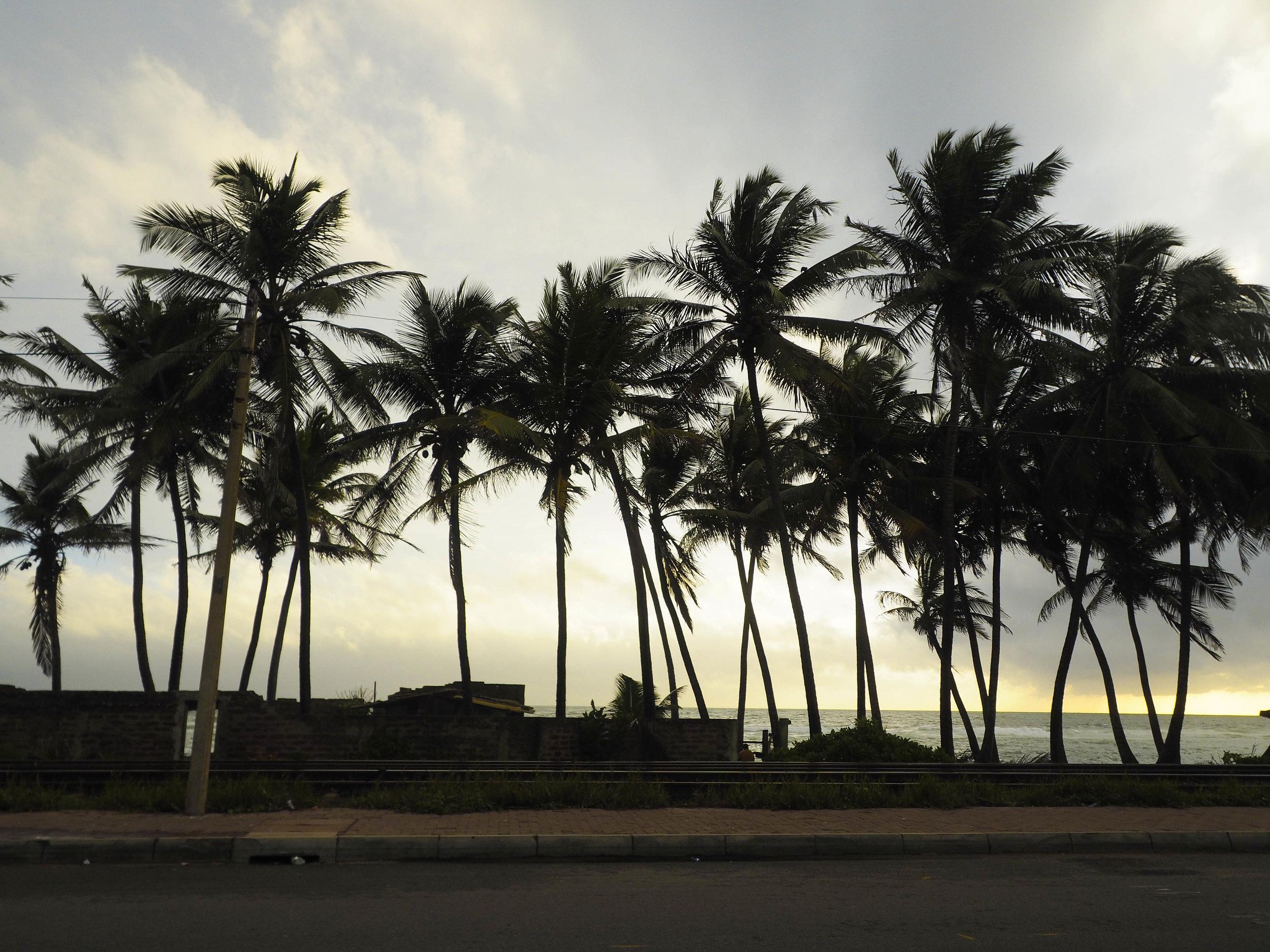 Fitness escapes in Ahangama Sri Lanka
