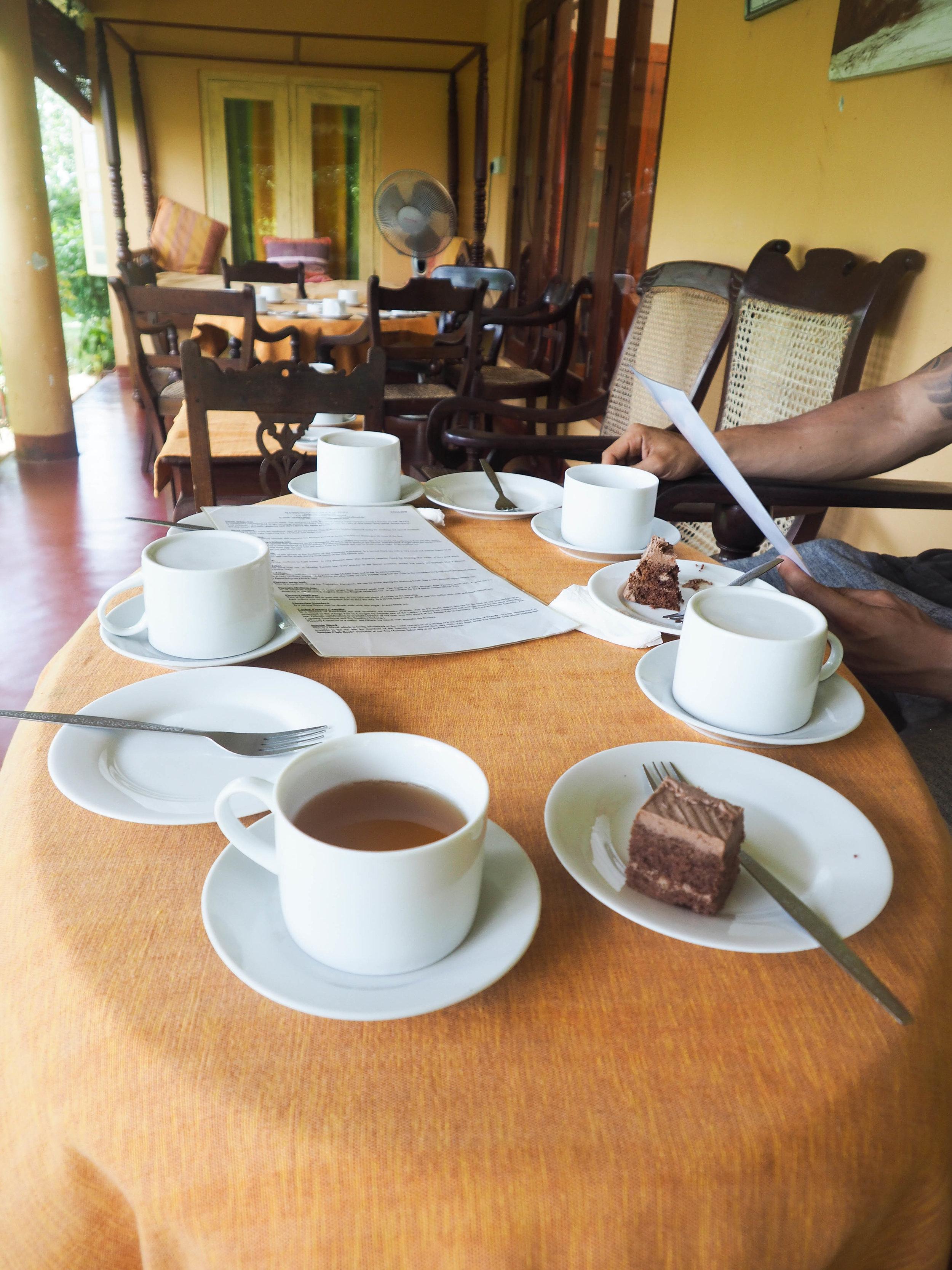 virgin white tea plantation Sri Lanka