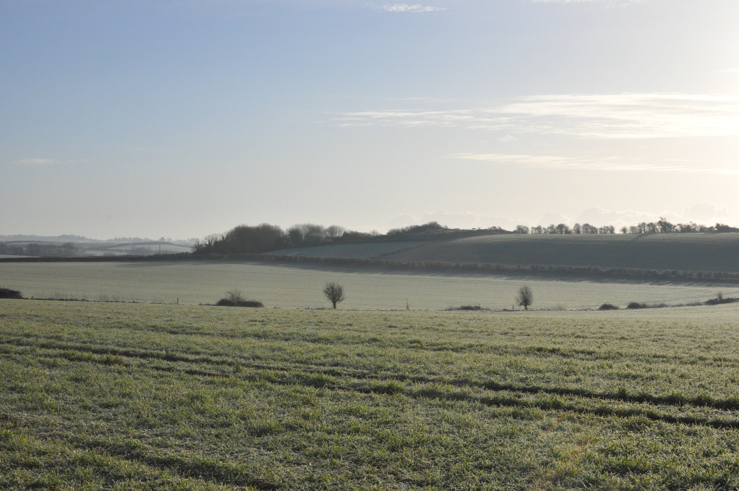 frosty-farm-fields