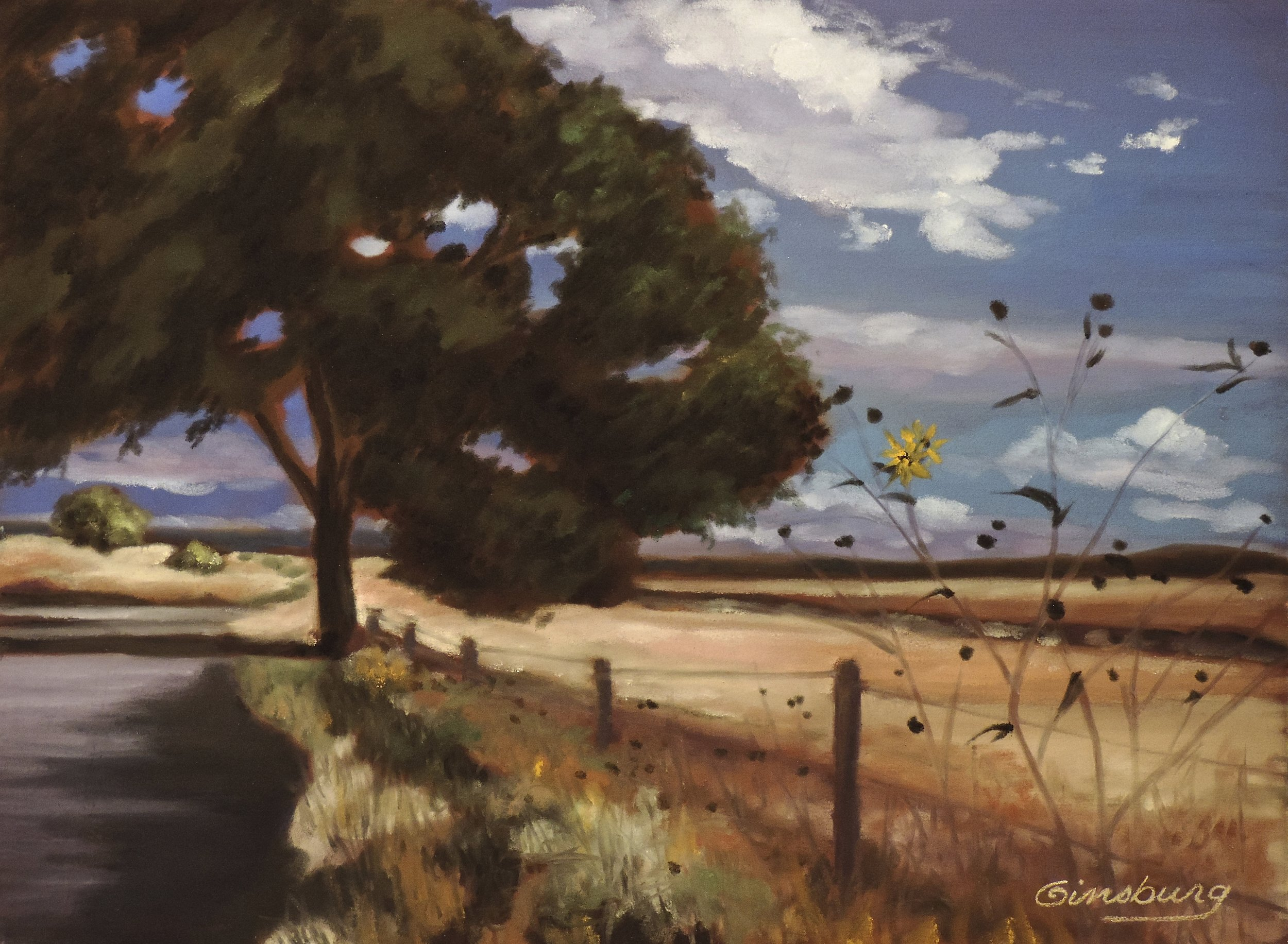 """New Mexico sunflowers"", near lamy, New Mexico  Plein Air  PanPastel® Cheri GInsburg ©"