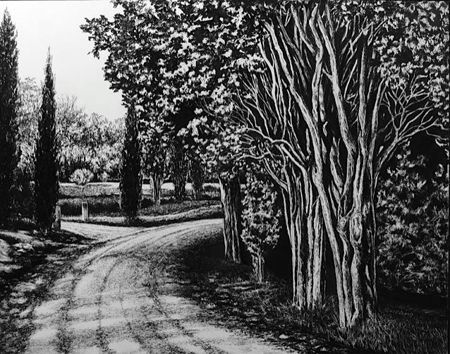 """""""road to vagliogli"""", near vagliogli, italy  Pen and Ink Cheri GInsburg ©"""