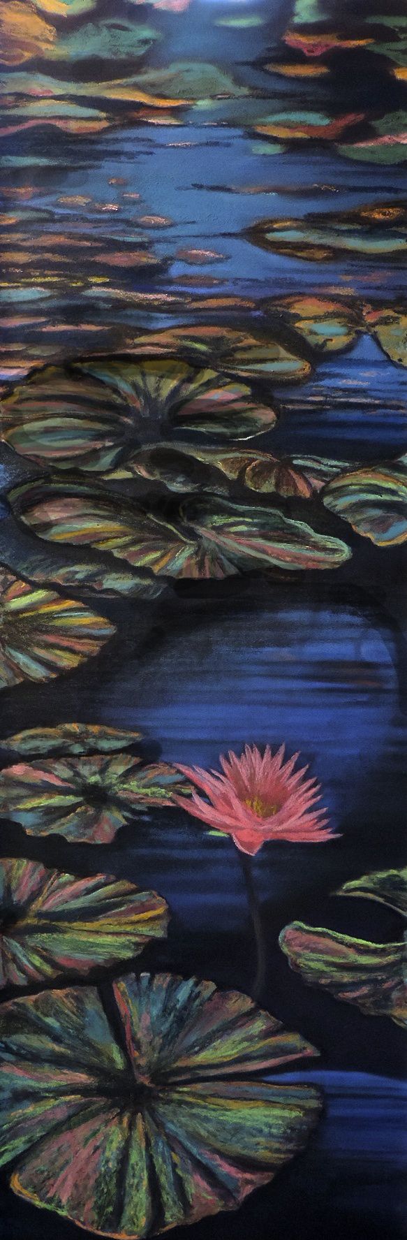 """""""WATER LILY"""", GIVERNY, FRANCE  Pastel  11.5 X 36 Cheri Ginsburg ©"""