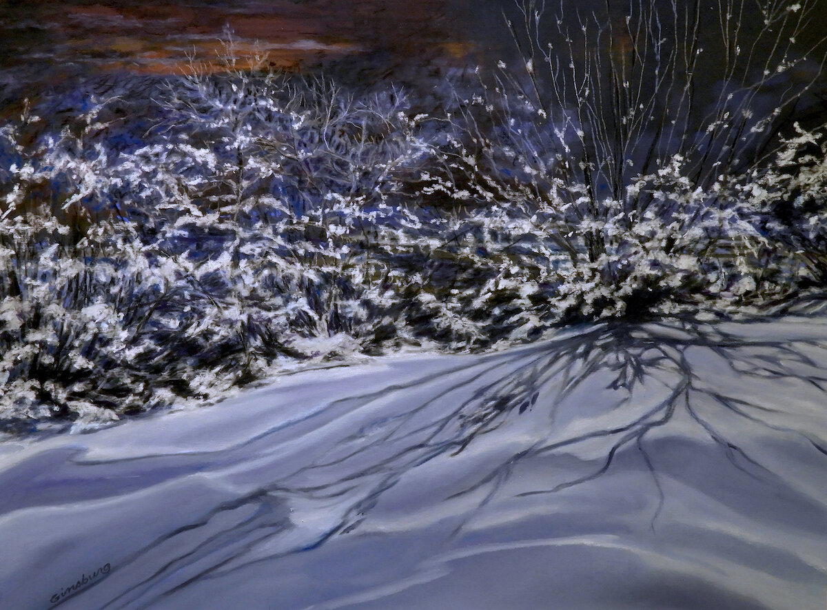 Winter Lace  9 x 12  PanPastel  Cheri Ginsburg ©