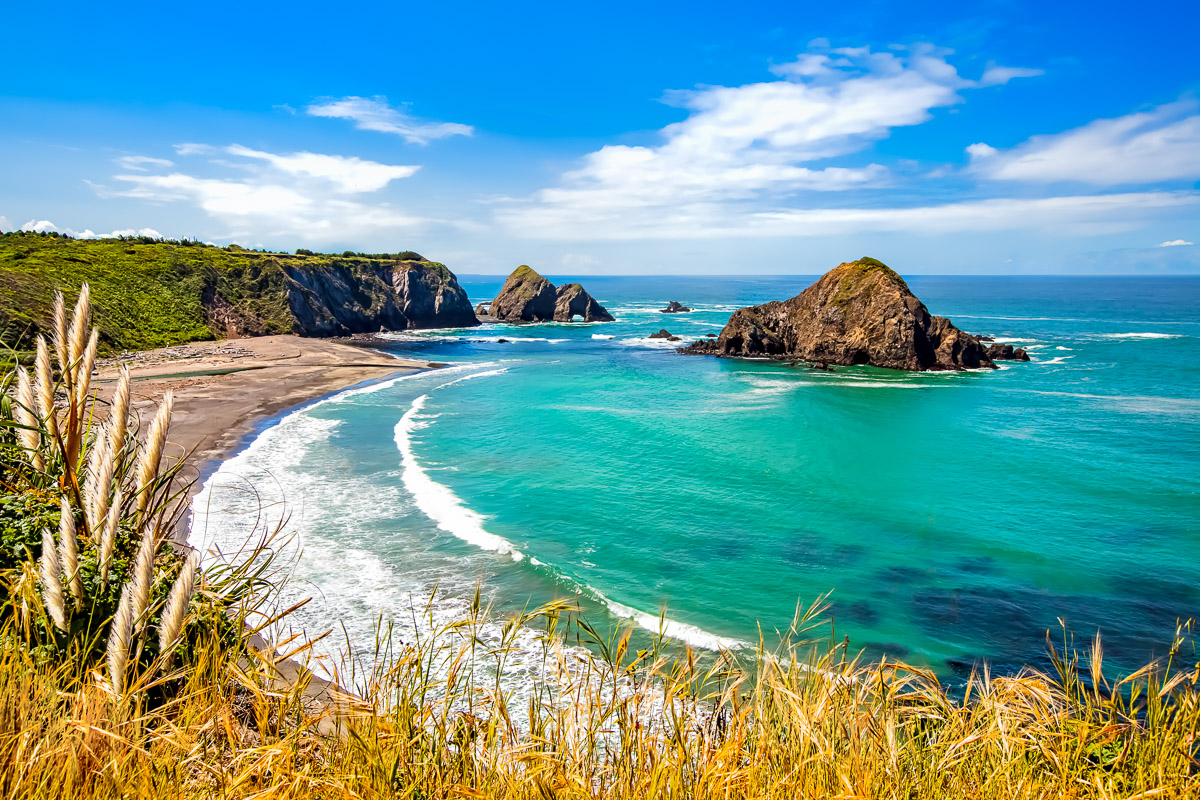Northern CA Coast-.JPG