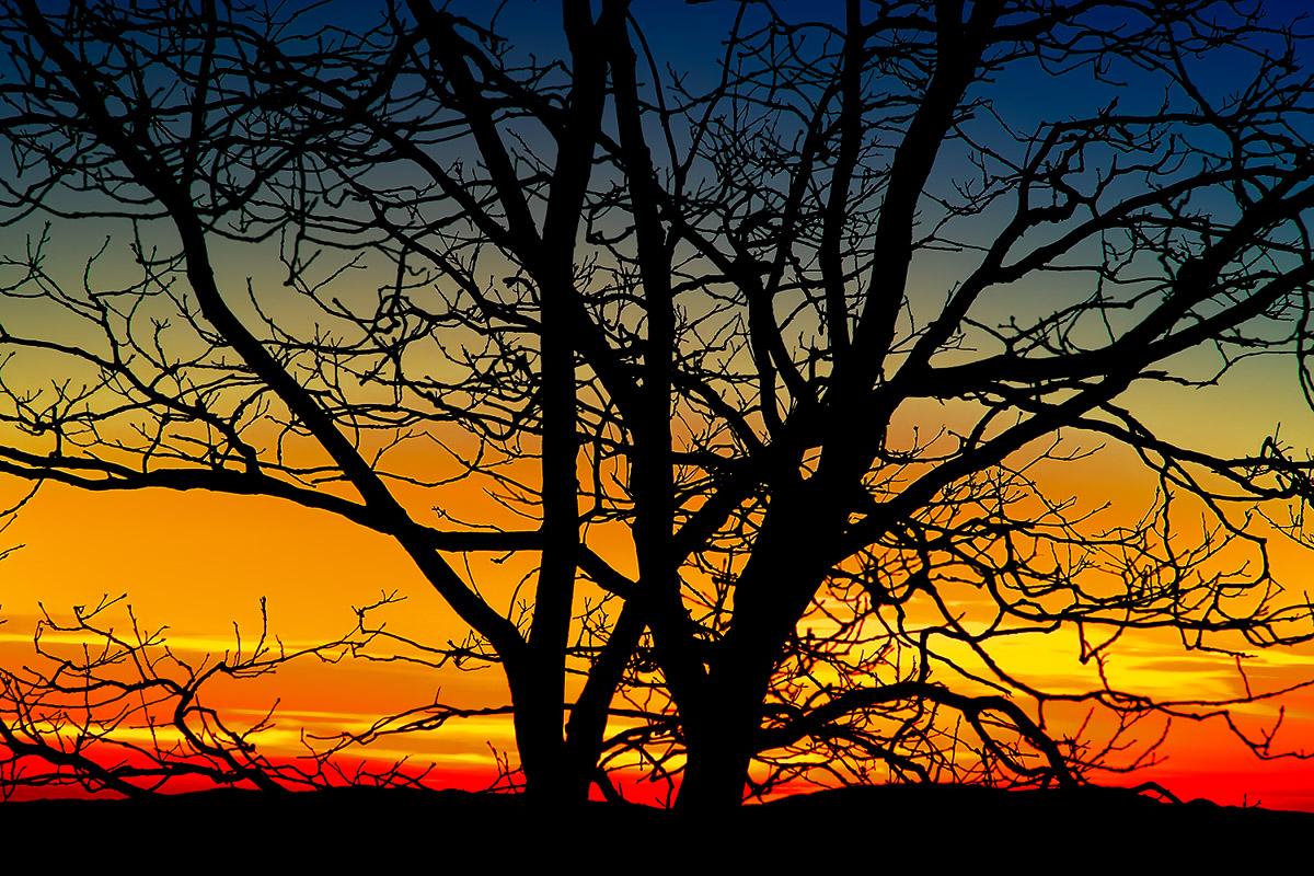 Sawmill Peak Sunset-.JPG