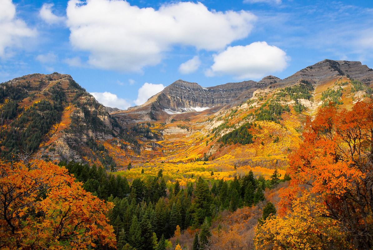 Mt Tipanogos Fall.jpg