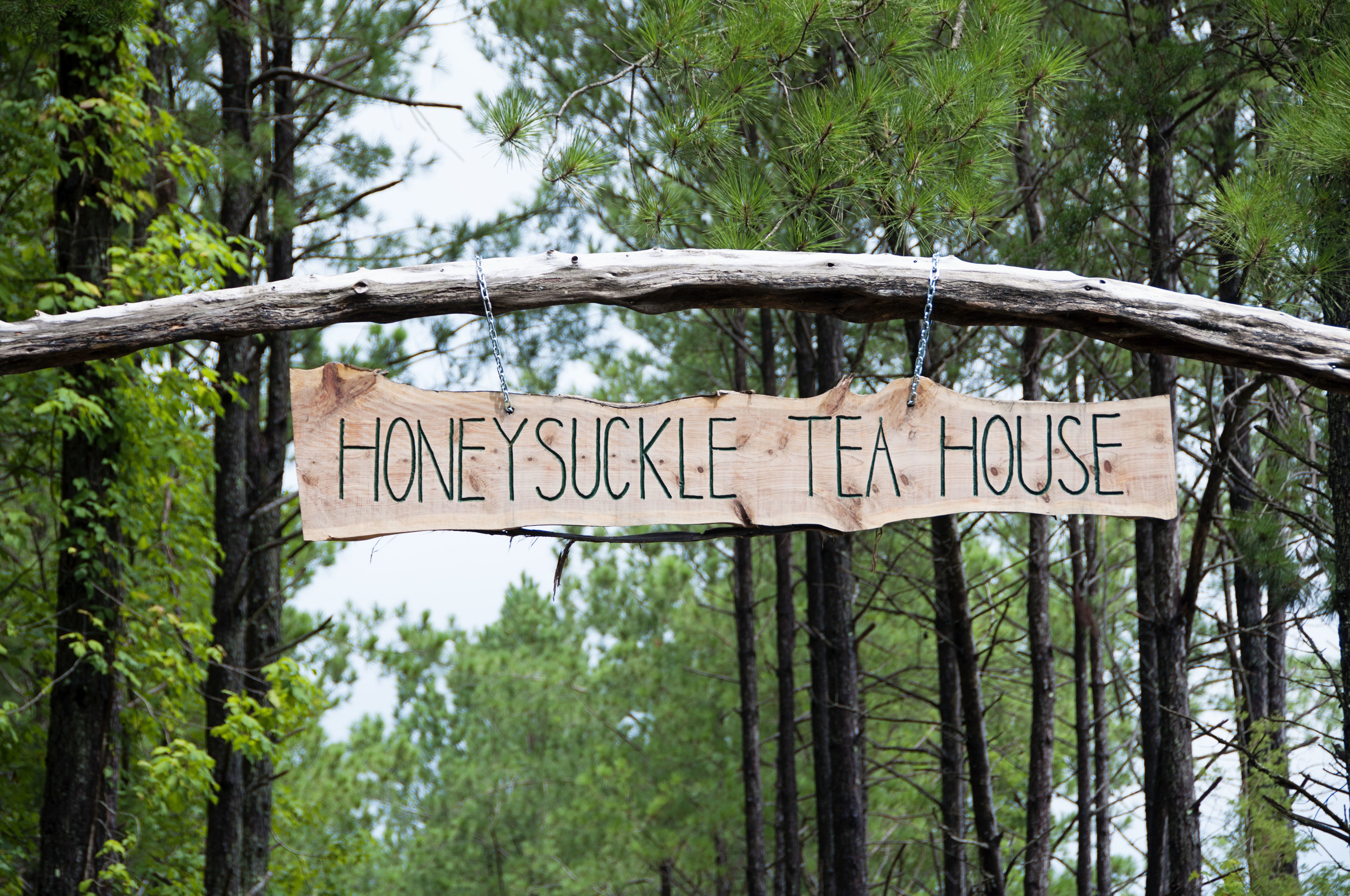 Honeysuckle2