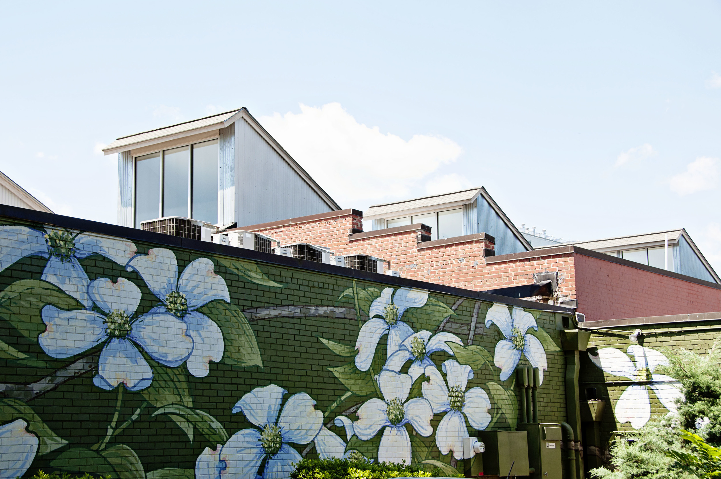 Michael Brown mural - dogwoods (2009-2011) Franklin Street, Chapel Hill, NC