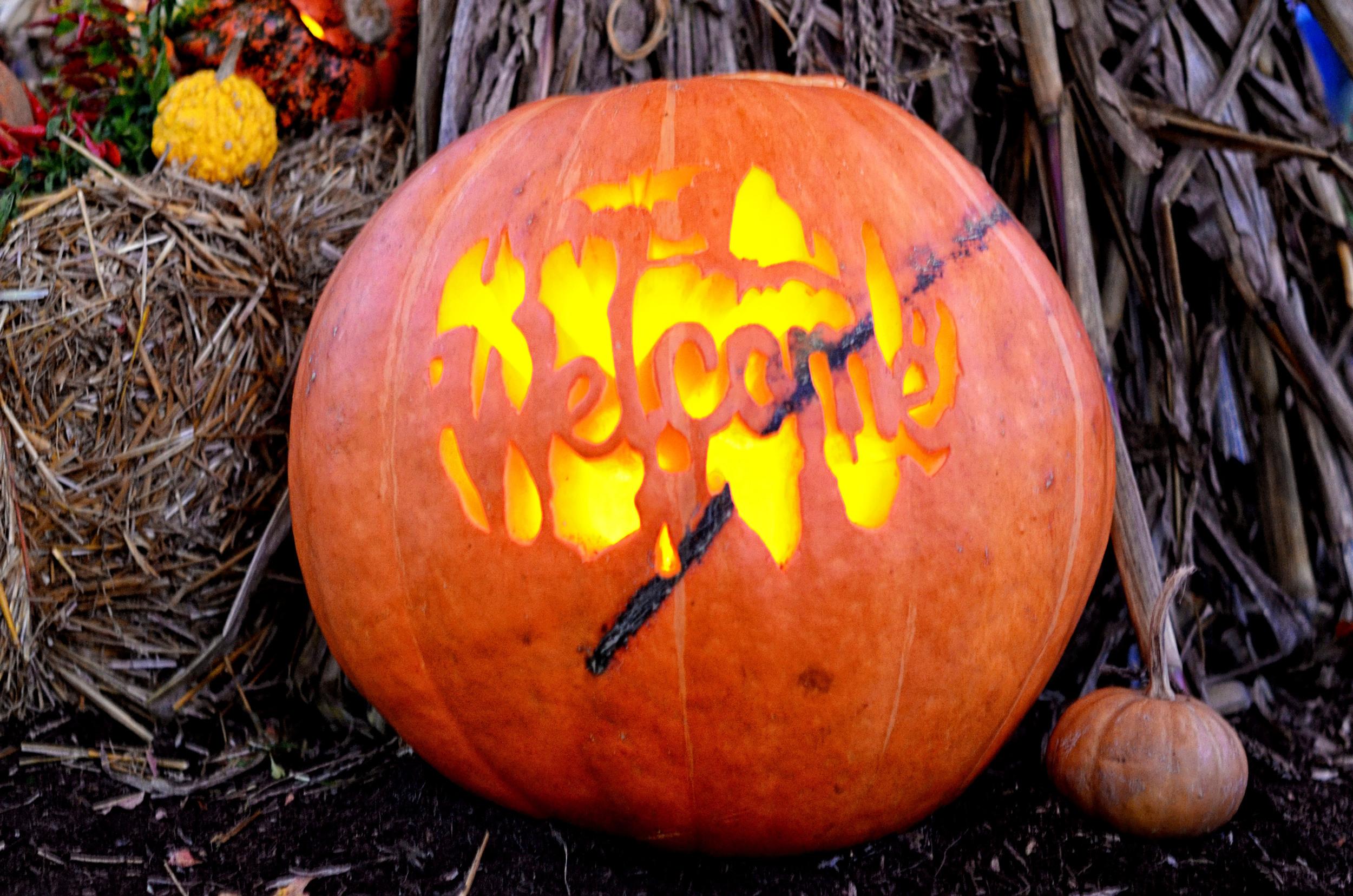 Fearrington-Halloween10.jpg