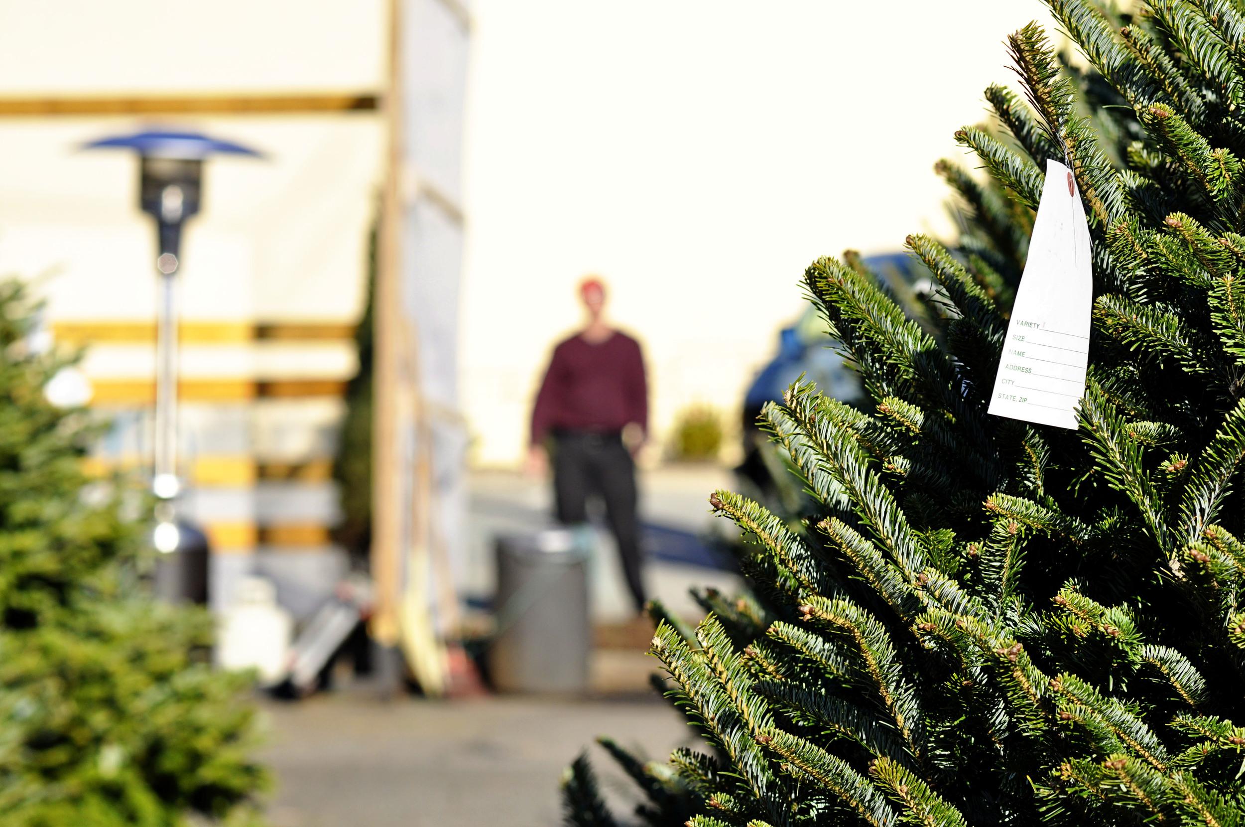 Christmas-Tree-Man.jpg