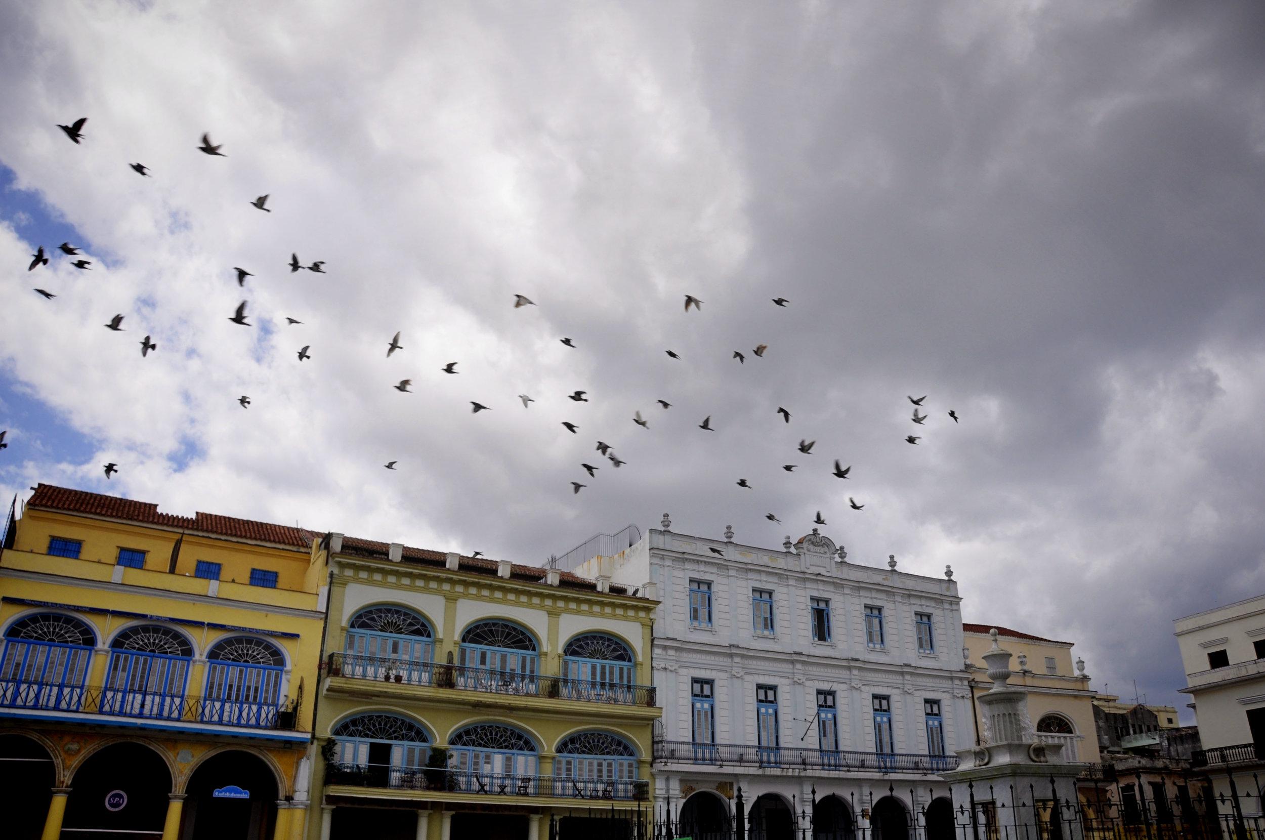 Havana317-36.jpg