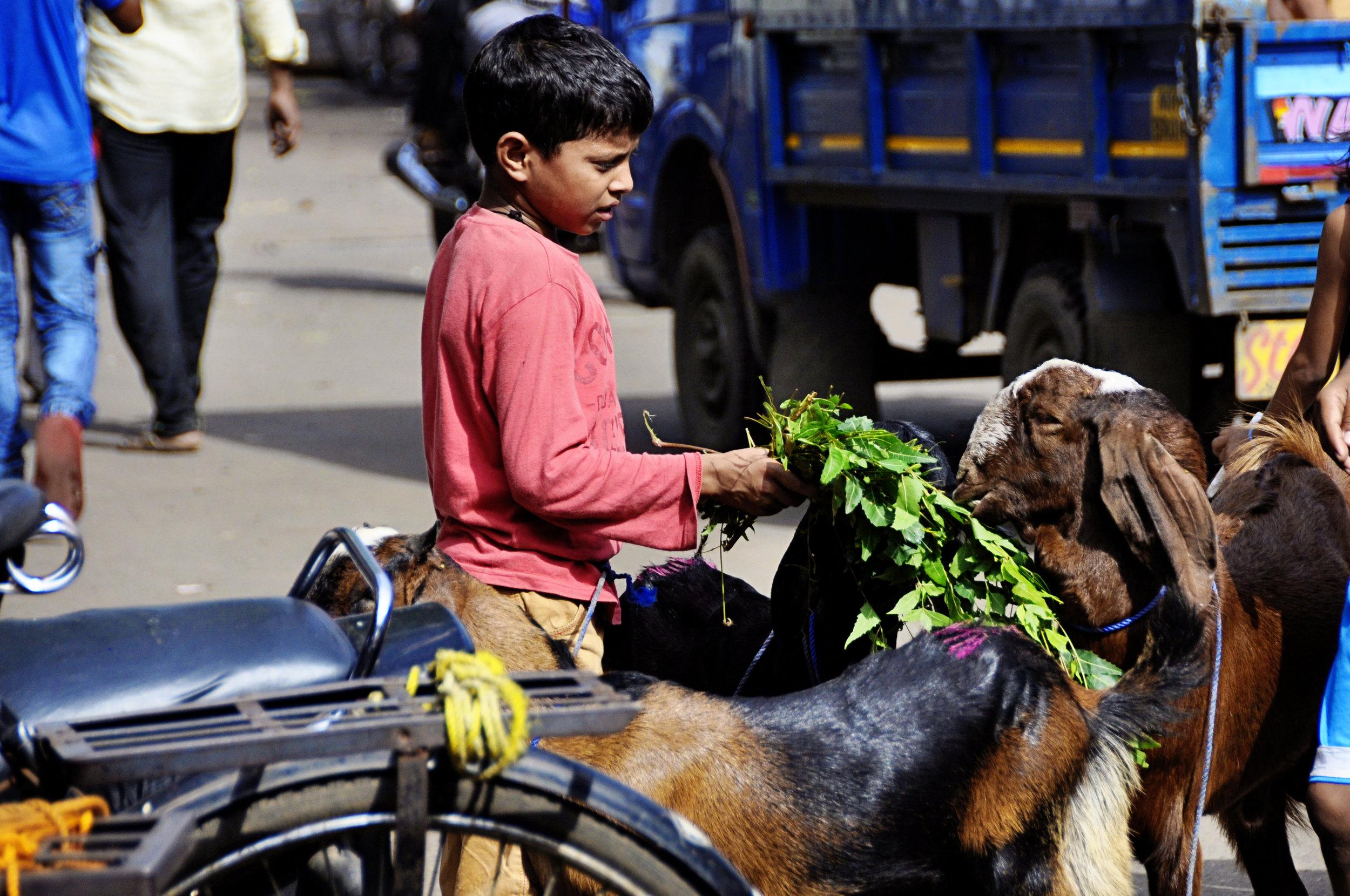 Dharavi-50.jpg