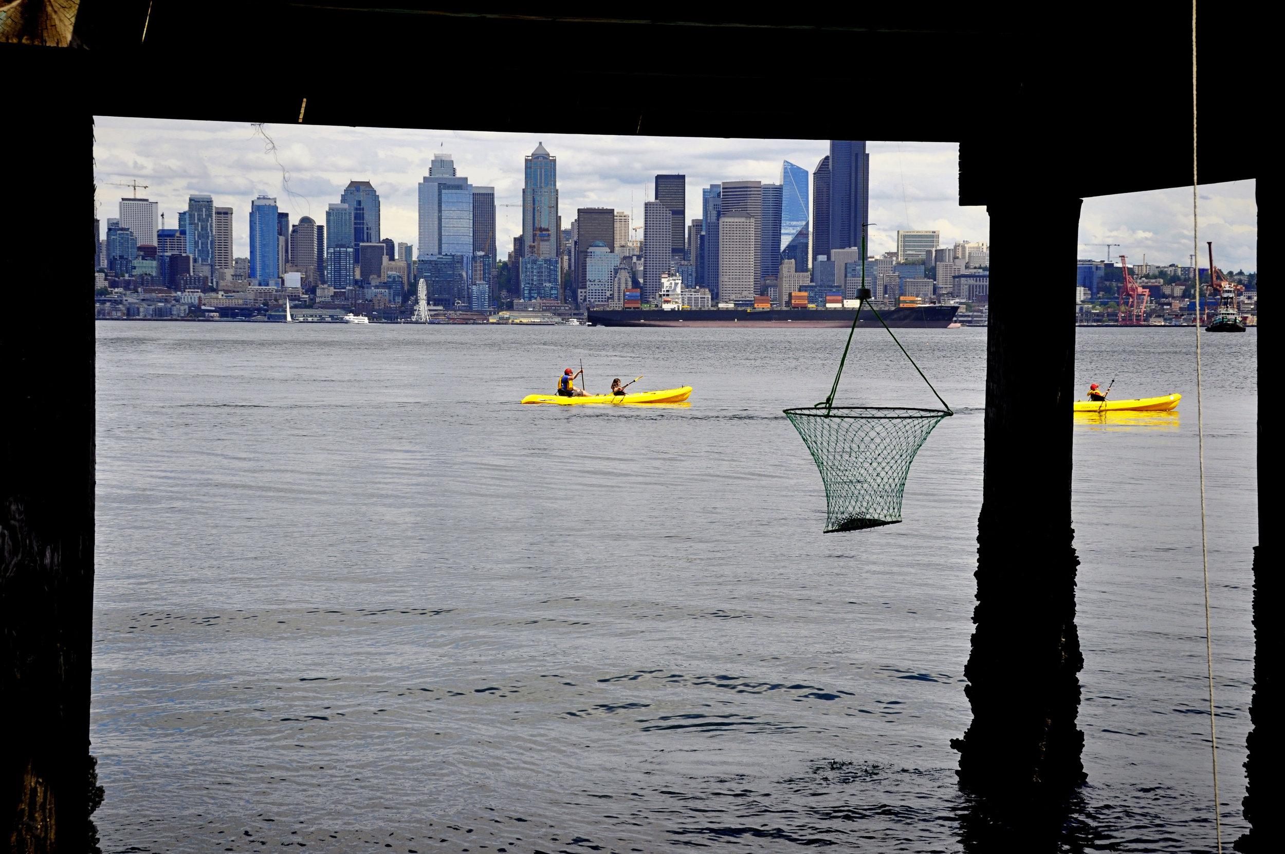Seattle19.jpg
