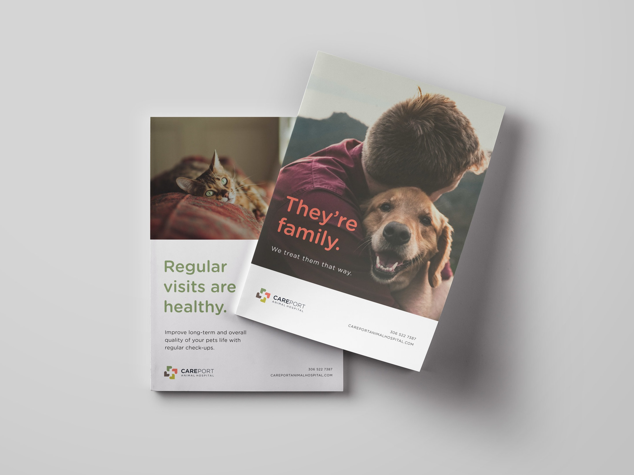Careport Animal Hospital - Brand Identity // Website
