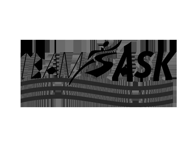 TeamSask.png