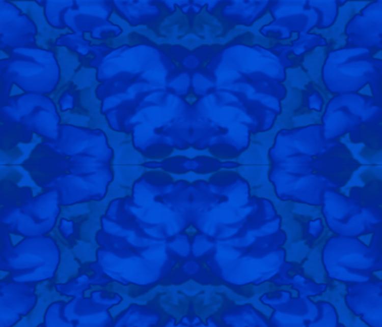 Blue+Floral.jpg