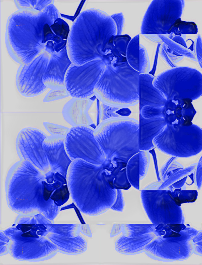 blue+plastic+wrap+orchid.jpg