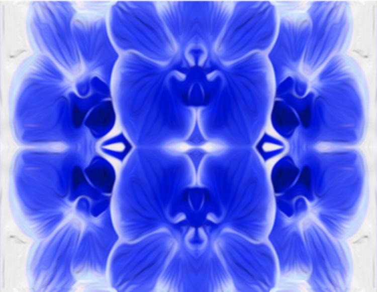 blurred+blue+kalied+orchid.jpg