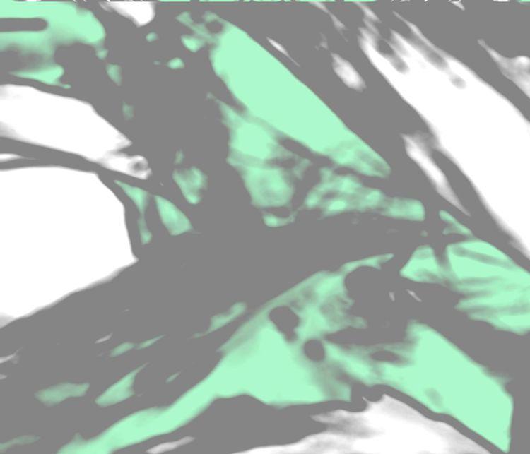 Butterfly+green.jpg