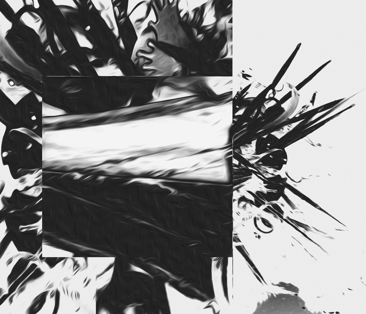 Chihuly+Graphic-BW+SK.jpg