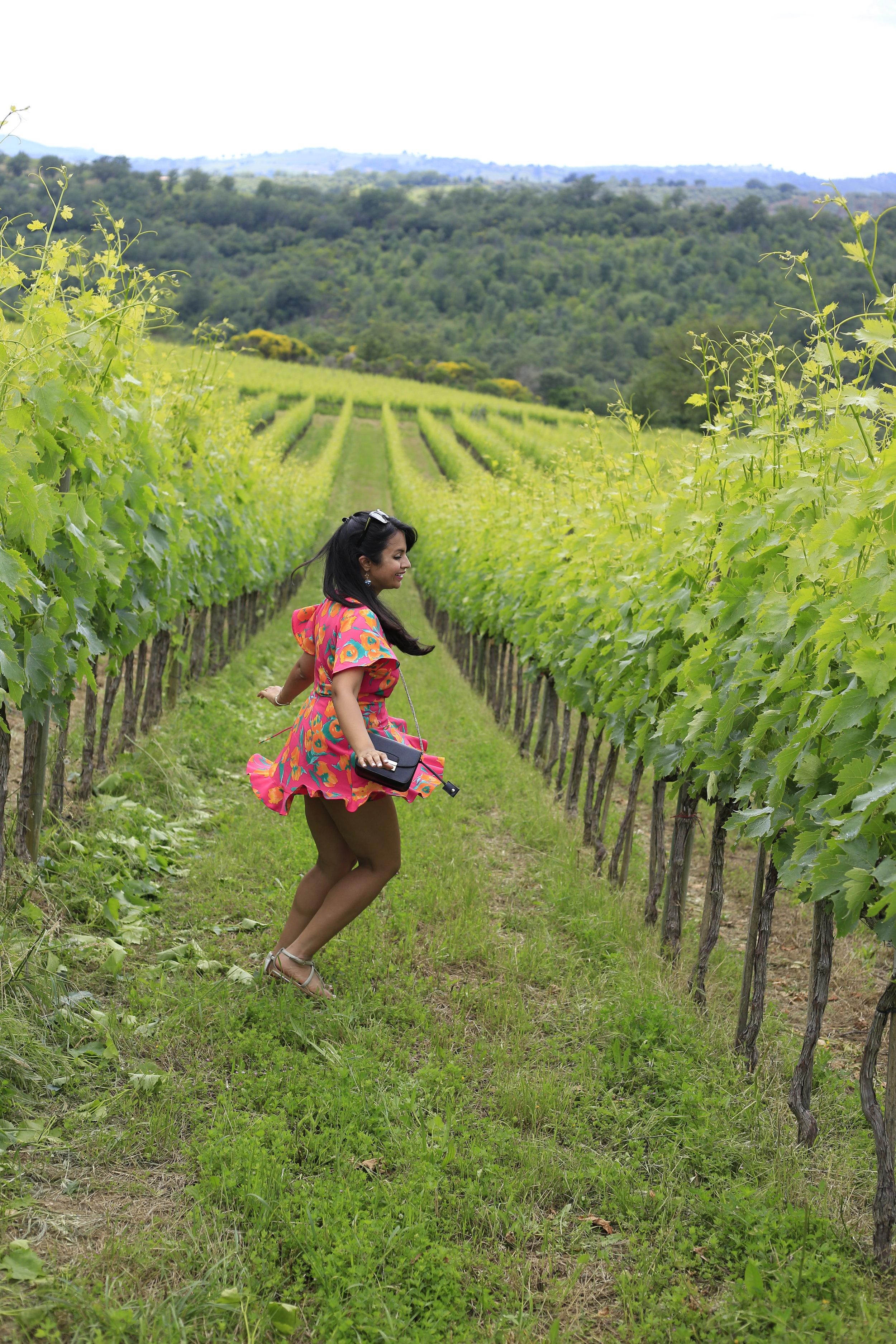 Roccapesta Tuscany Winery Morelli di Scansano Italy Travel Guide
