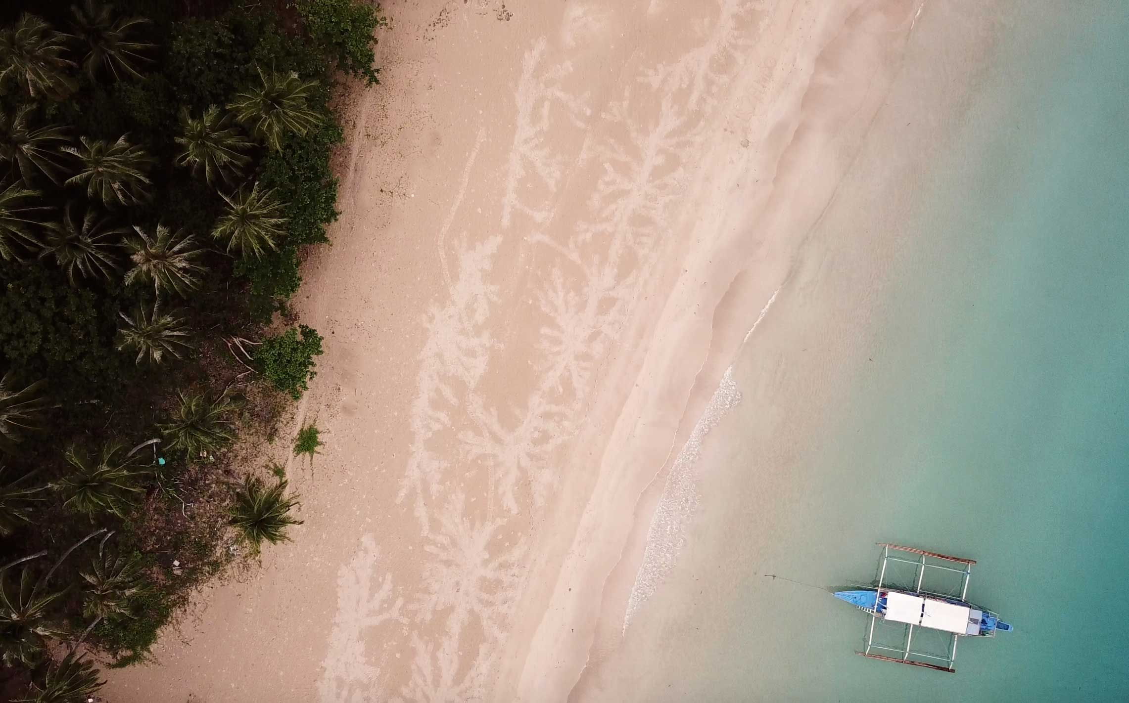 The beautiful, lush beaches of Palawan