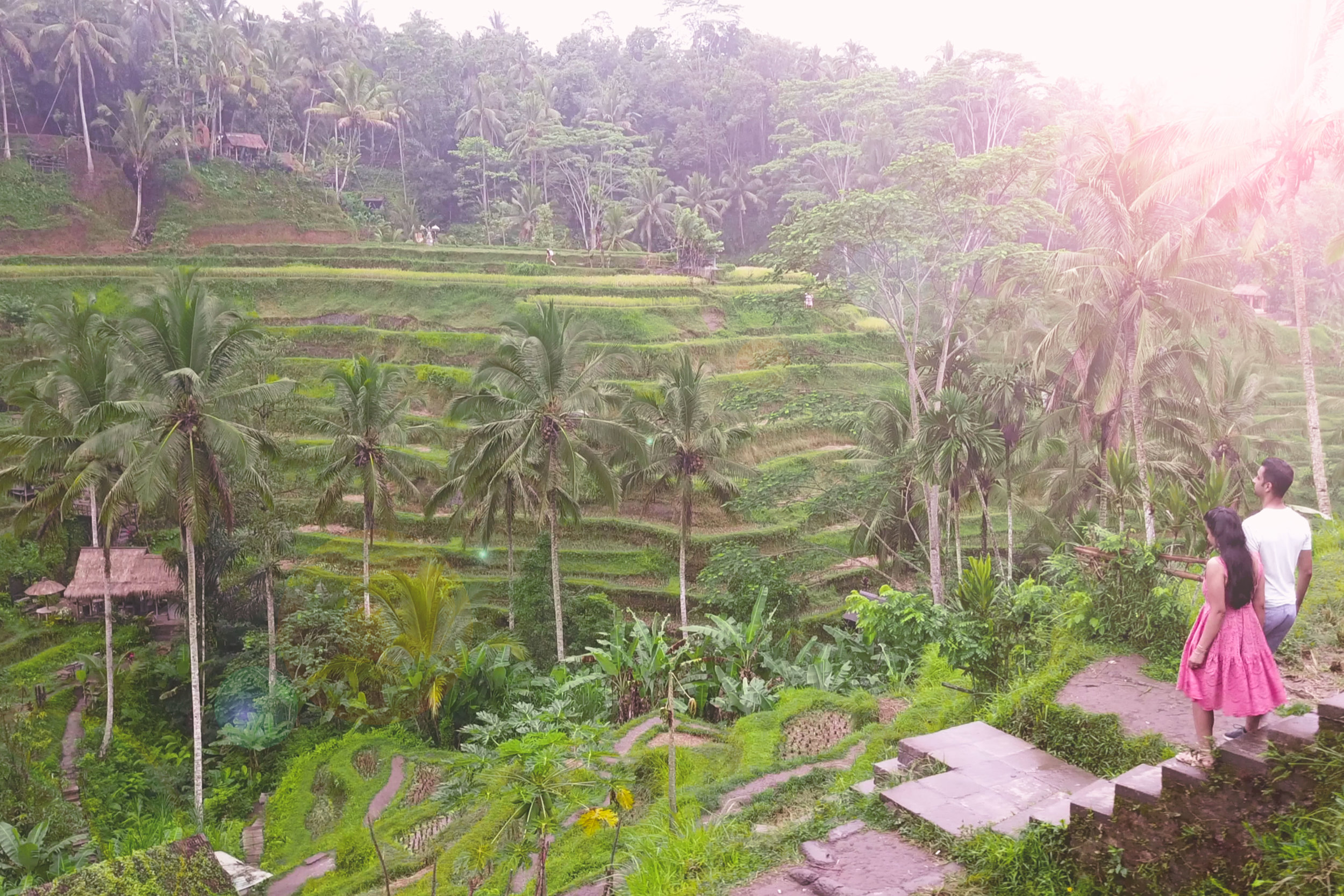 There are so many beautiful rice fields in Bali, including Tegallalung just outside Ubud.