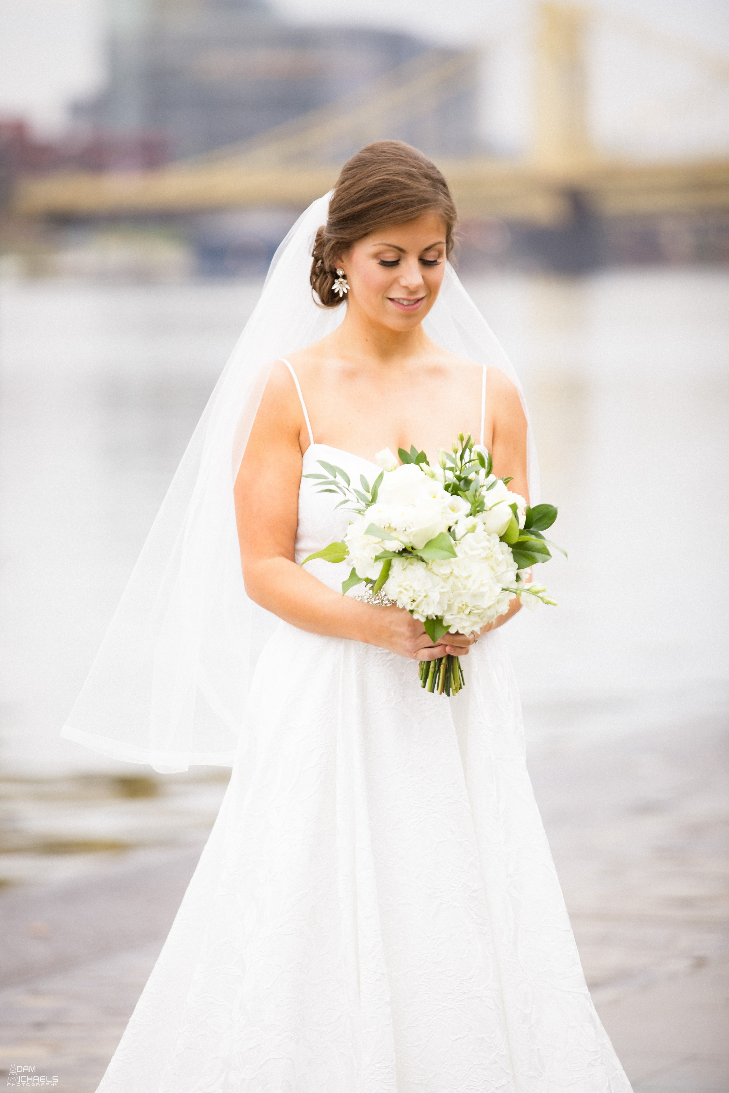 First Look Pittsburgh Point Wedding Pictures_1776.jpg