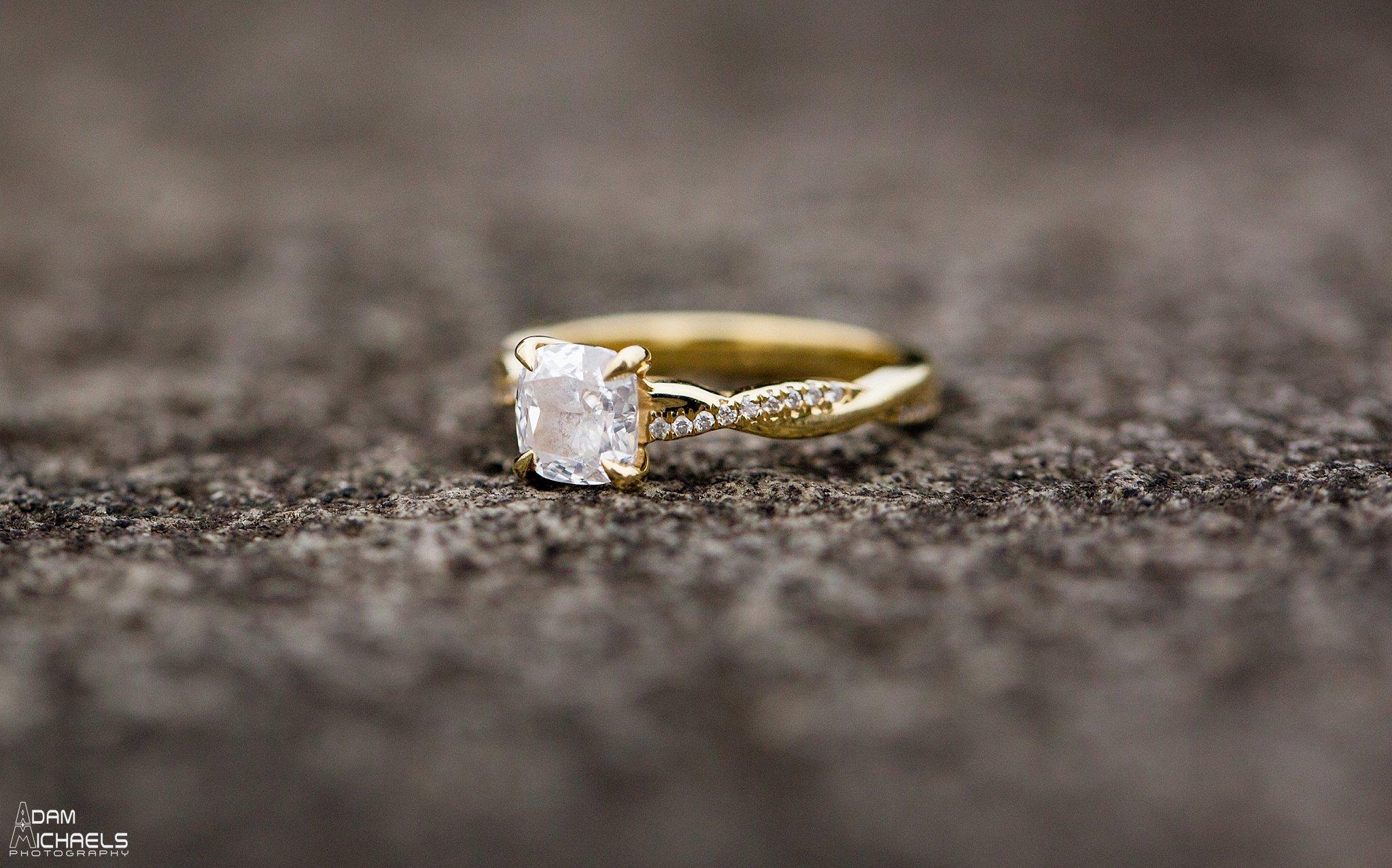 Winter Schenley Engagement_0277.jpg