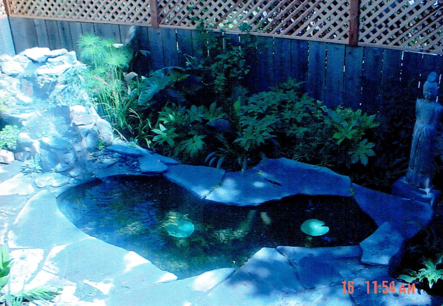 BS_pond_01e.jpg
