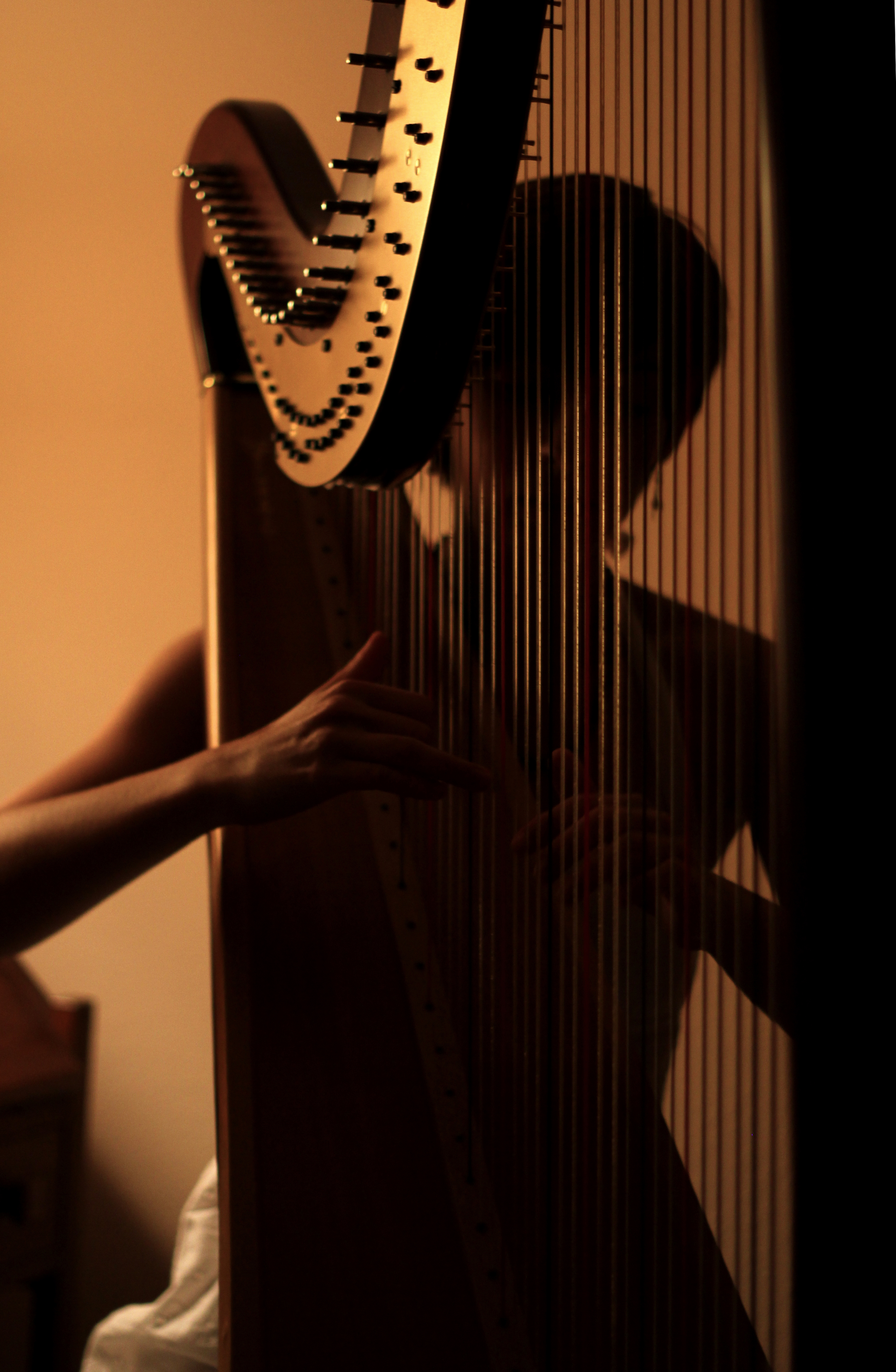 Lauren George, Charleston-based harpist; Photo by Trey George