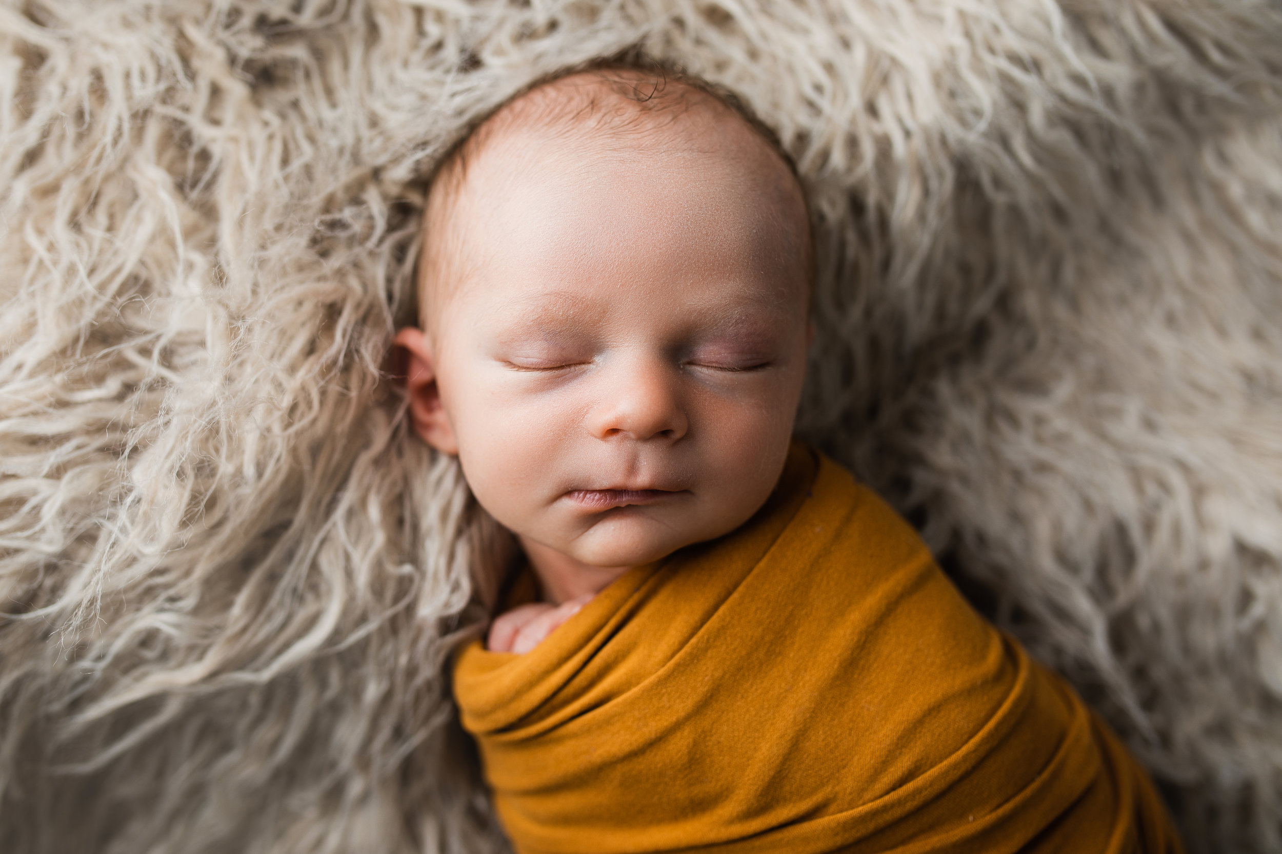 mount vernon columbus ohio newborn photographer (18).jpg