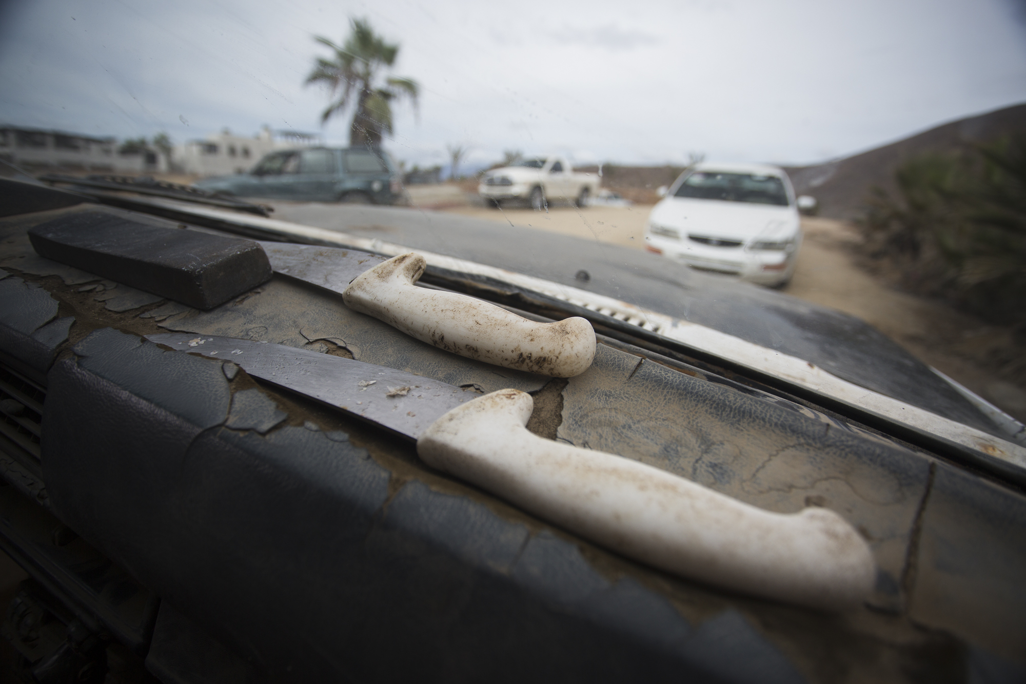 Two knives and a whetstone used to gut and clean fish sit on a fisherman's car dashboard. The lives of around 80 families in the neighboring towns of Todos Santos and El Pescadero are dedicated to shark fishing; with many of the families having been involved in the trade for generations.