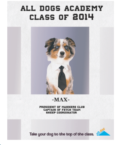 Obedience School Yearbook