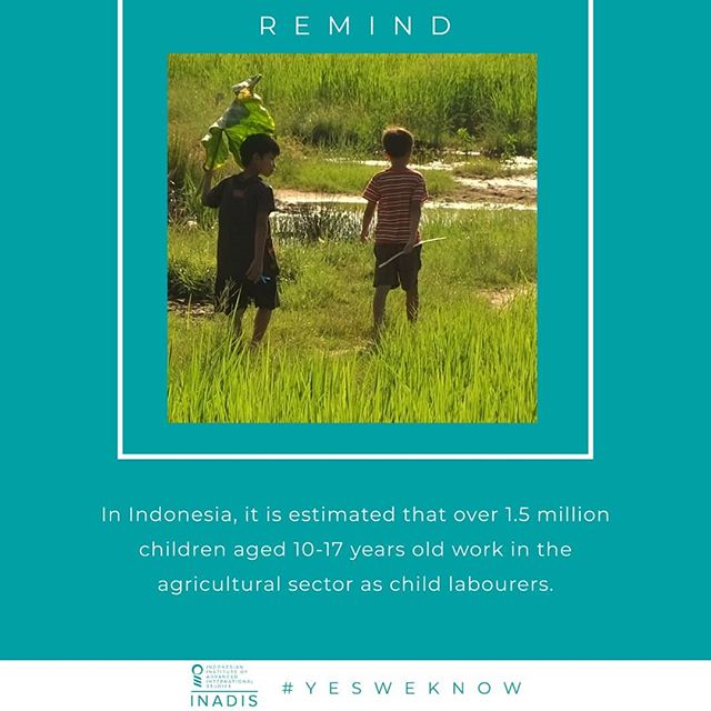 "June 12 has been commemorated as World Day Against Child Labour (WDACL) since 2002. The International Labour Organisation (ILO) initiated WDACL to highlight the worldwide extent of child labour and the global efforts to eliminate it. This year's theme for WDACL is ""Children shouldn't work in fields, but on dreams!"" According to ILO, 152 million children within the age group of 5-17 years are considered as working children, of which 73 million of them work as child labour in hazardous situations. Child labour occurs in every sector, but 71% of it is concentrated in agricultural sector, including fishing, forestry, livestock herding, and commercial farming.  In Indonesia, it is estimated that over 1.5 million children within the age group of 10-17 years work in the agricultural sector as child labourers. Children who work in the agriculture sector tend to work long hours and are often required to use heavy and dangerous machinery that violate Occupational Safety and Health (OSH) standards, making them vulnerable to life-threatening accidents. They are also at high risk of getting exposed to hazardous pesticides and extreme temperatures.  The Indonesian government's commitment to eliminate all forms of child labours by 2022 is expressed through the incorporation of the ILO Conventions concerning the Child Labour (CL) and Worst Forms of Child Labour (WFCL) into Act No. 23 of 2002 on Child Protection and Act No. 13 of 2003 on Manpower. The Government of Indonesia has also established the National Action Committee on the Elimination of WFCL (NAC-WFCL) through Presidential Decree No. 12 of 2001.  Improving access to quality education to prevent children from dropping out of school and entering the workforce, as well as educating families about the importance of sending their children to school have been Indonesia's main priorities in eradicating child labour. As a result, as reported by the United States Department of Labor in 2017, Indonesia has achieved moderate progress in dealing with child labours. However, support from all parties is still needed to realise a child labour-free Indonesia.  #WorldDayAgainstChildLabour #NOChildLabourDay #ILO100 #DidYouKnow"