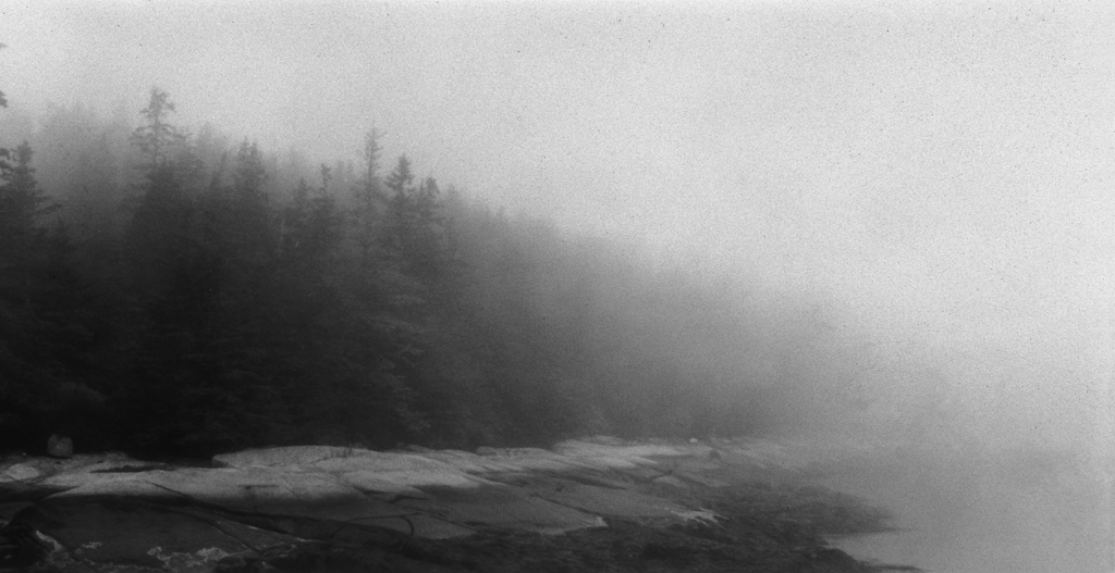 Spruce Fade / Lawrys Island  2002