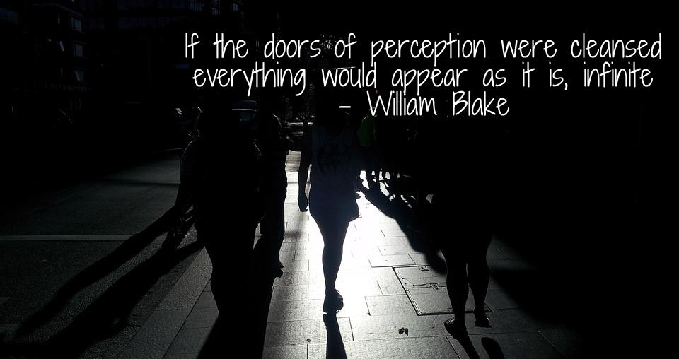 Tuesday - Perception vs. Reality