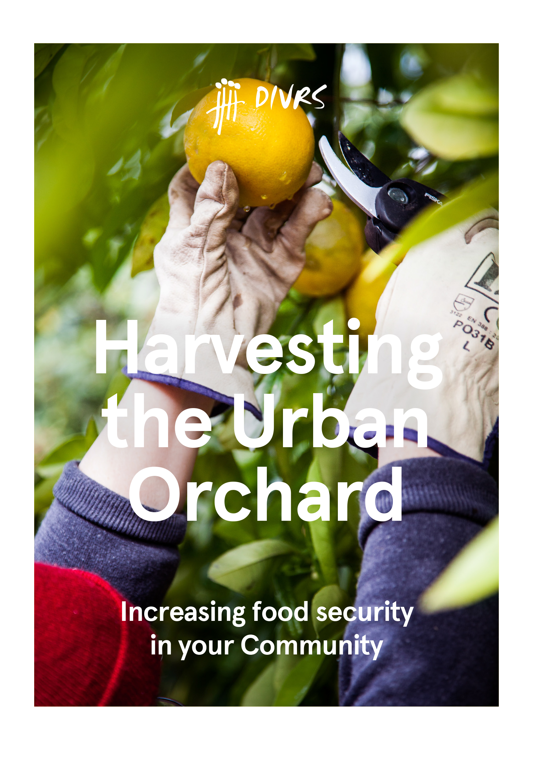 DIVRS Harvesting the Urban Orchard Cover.jpg