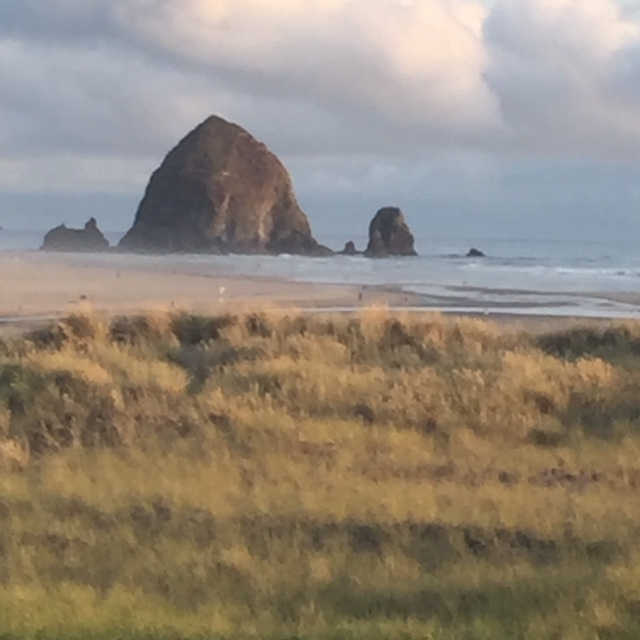$500 - Weekend at Cannon Beach - A weekend get away at Cannon Beach! Stay in a condo close to the beach and walking distance to town. Also available is a tennis court and swimming pool. Good for weekends in 2020. Some blackout dates apply, maximum 6 guests per night. For more info email info@pdxcb.comAvailability: First 2 donations at the $500 level are eligible.