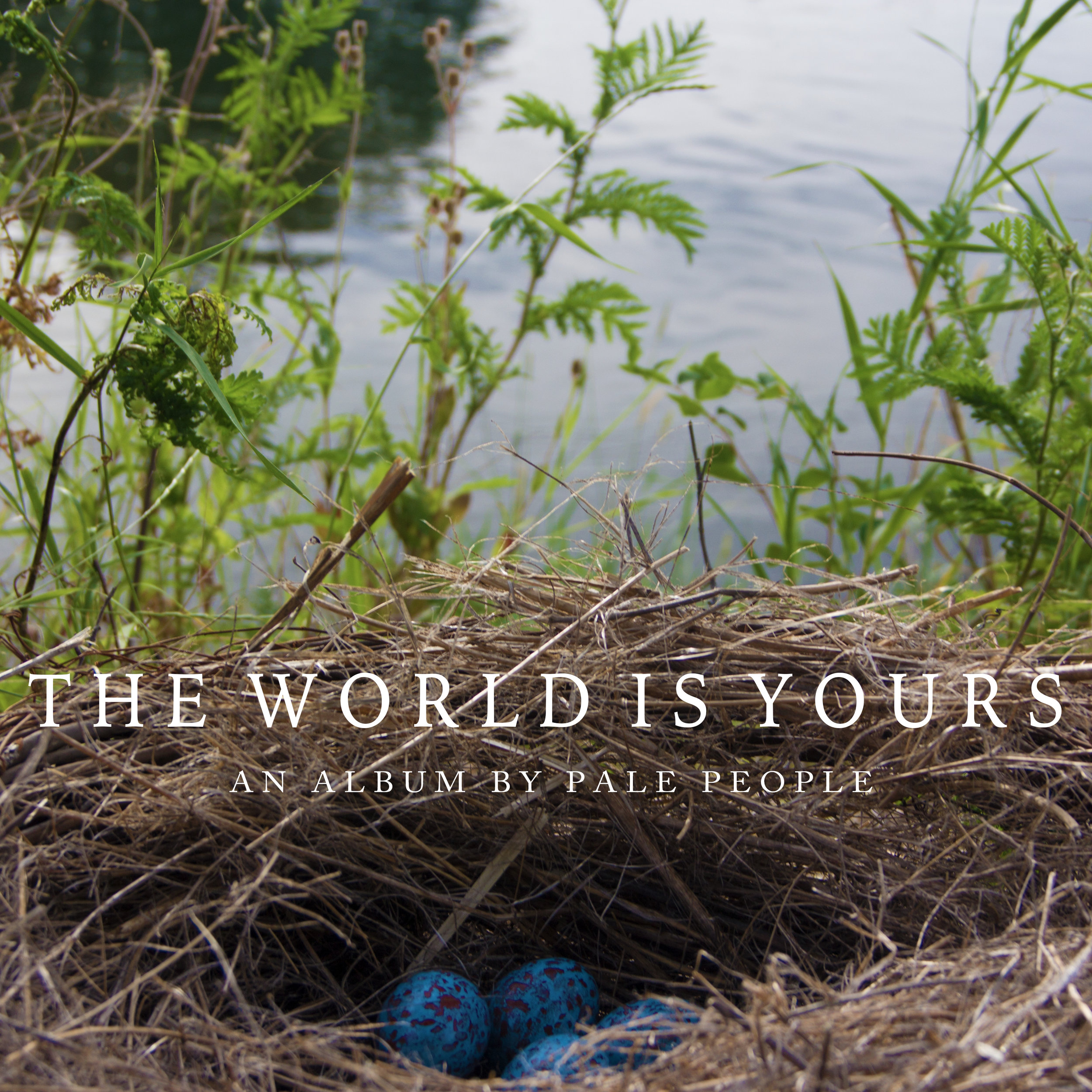 The World is Yours Album Cover Cropped.jpg
