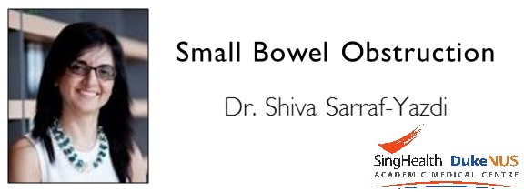 Small Bowel Obstruction.JPG