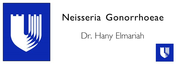 Neisseria Gonorrhoeae.JPG