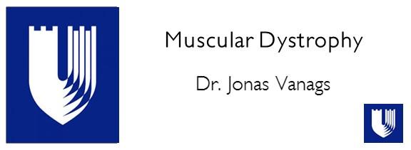 Muscular.jpg
